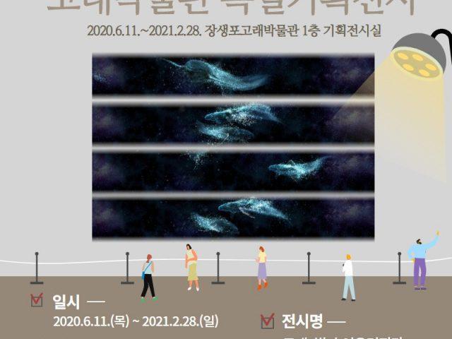 [고래박물관 특별기획전시] 고래, 빛과 어우러지다